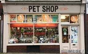 Photo of home for sale at Grooming & Pet Shop, Kings Park NY