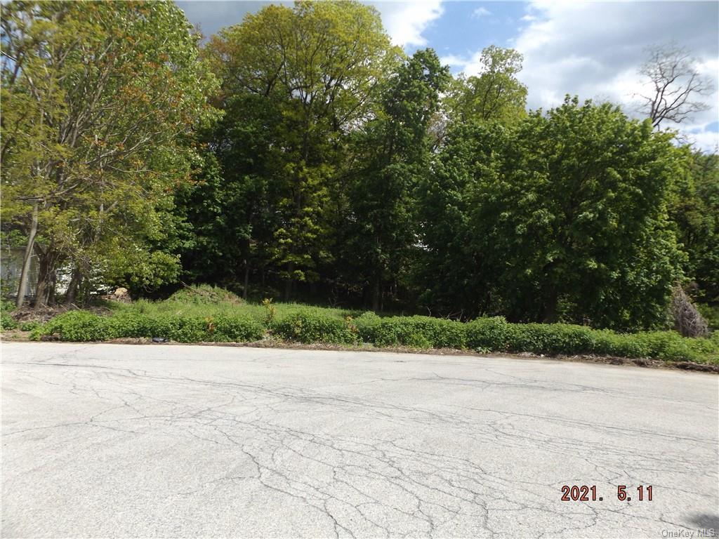 45 Buena Vista Ave, Peekskill, NY, 10566