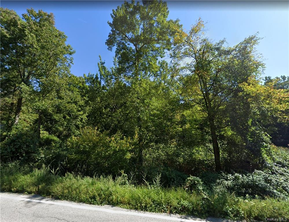 Great opportunity to build a modern house in a quiet and picturesque area. Close to the Hudson River
