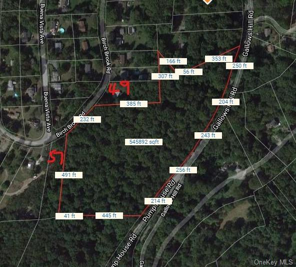 12.52 Acres in Cortlandt Manor. Property address is Gallows Hill but there is better access from Bir