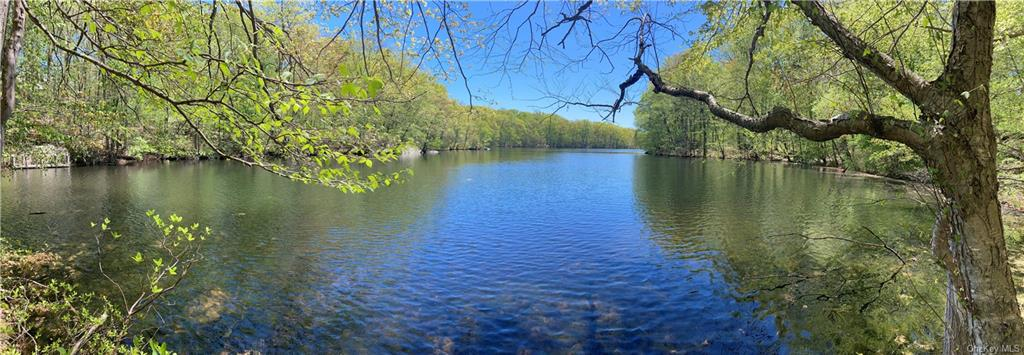 The last available lake lot in Conyer's Farm- perfect for kayaking, fishing, swimming, etc. Build your dream house!